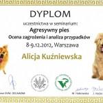 Seminarium Agresywny pies